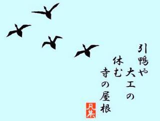 16春の季語・動物・引鴨【俳句】.jpg