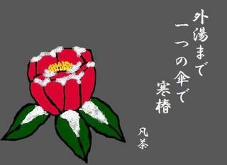 47冬の季語・植物・寒椿【イラスト】.jpg