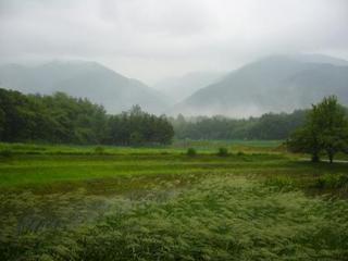 22夏の季語・天文・青梅雨�@.jpg