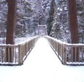 42冬の季語・天文・雪(写真�A).jpg